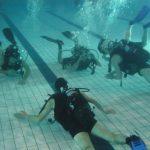 piscine-27-jan-2009-8