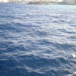 Egypte Hurghada sept 2010 -45
