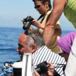 Baleino du 28 mai au 03 juin 2011 - le 29 12-58-16