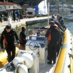 St Cyr sur Mer le 19 mars 2011-1