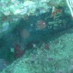Week end mai 2013 à Cap Cerbere le 09 11-04-16