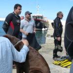 Week end mai 2013 à Cap Cerbere le 11 15-03-31